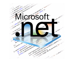 Effective Microsoft Development Services by ARKA Softwares