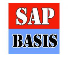 Get into SAP BASIS to get more Opportunities