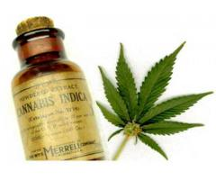 Medical cannabis,THC oil