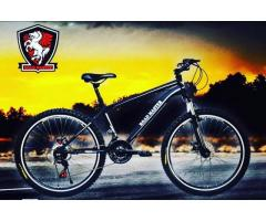 COLORFUL SPORTS BEST BICYCLE SELLER ROAD MASTER OFFERING FRANCHISE