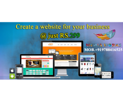 Website at 299 per year