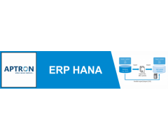 ERP SAP HANA Course in Delhi | ERP SAP HANA Training Institute in Delhi- Aptron Solution