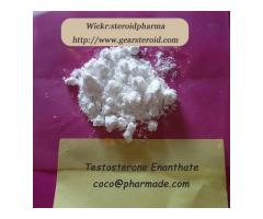 Online Buy Testosterone Enanthate Anabolic Steroid