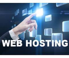 SSD web hosting services at Net Craft India