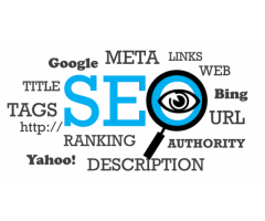 Local SEO Services in Delhi