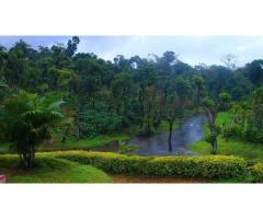 Coorg Packages From Bangalore