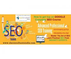 Want to master SEO techniques and skills? Join SEO Training