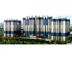 JKG Palm Court: 2 and 3 BHK Homes in Noida Extension 9266850850